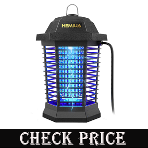 Best bug zapper usa